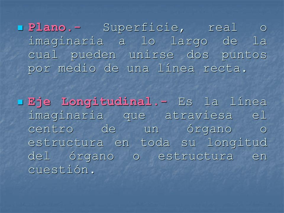 Plano.- Superficie, real o imaginaria a lo largo de la cual pueden unirse dos puntos por medio de una línea recta.
