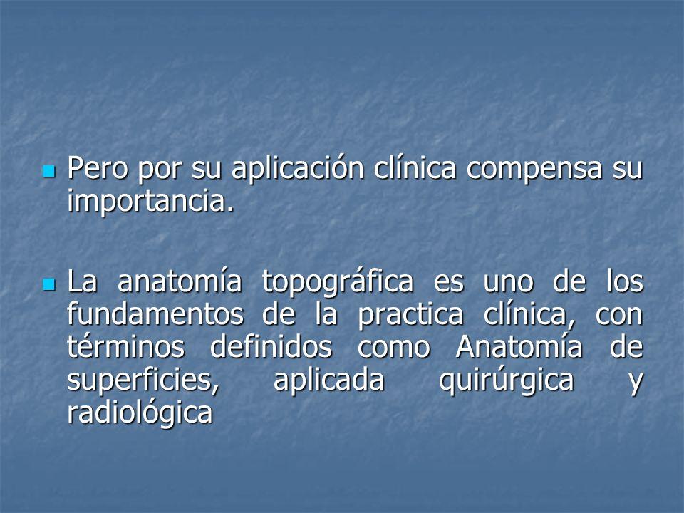 Pero por su aplicación clínica compensa su importancia.