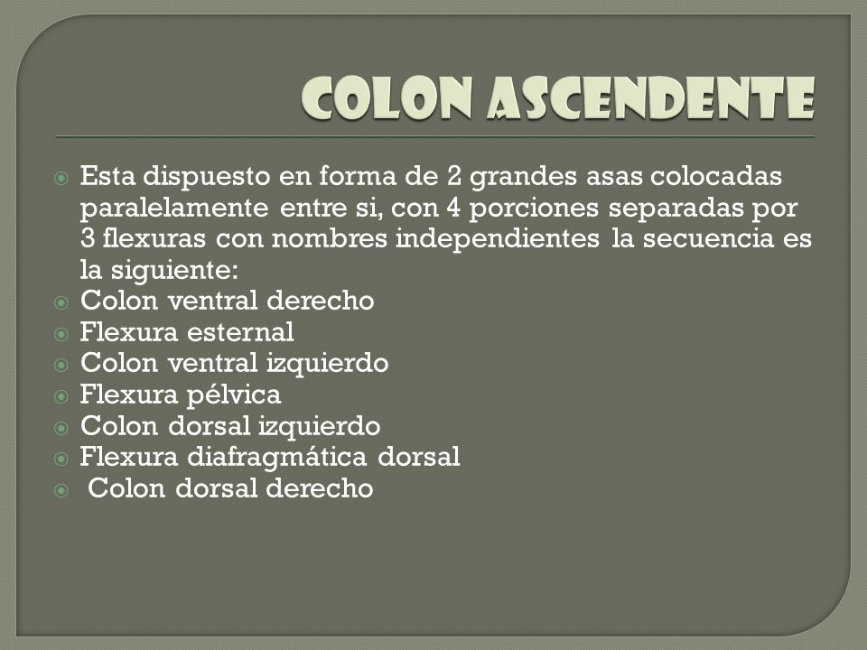 COLON ascendente