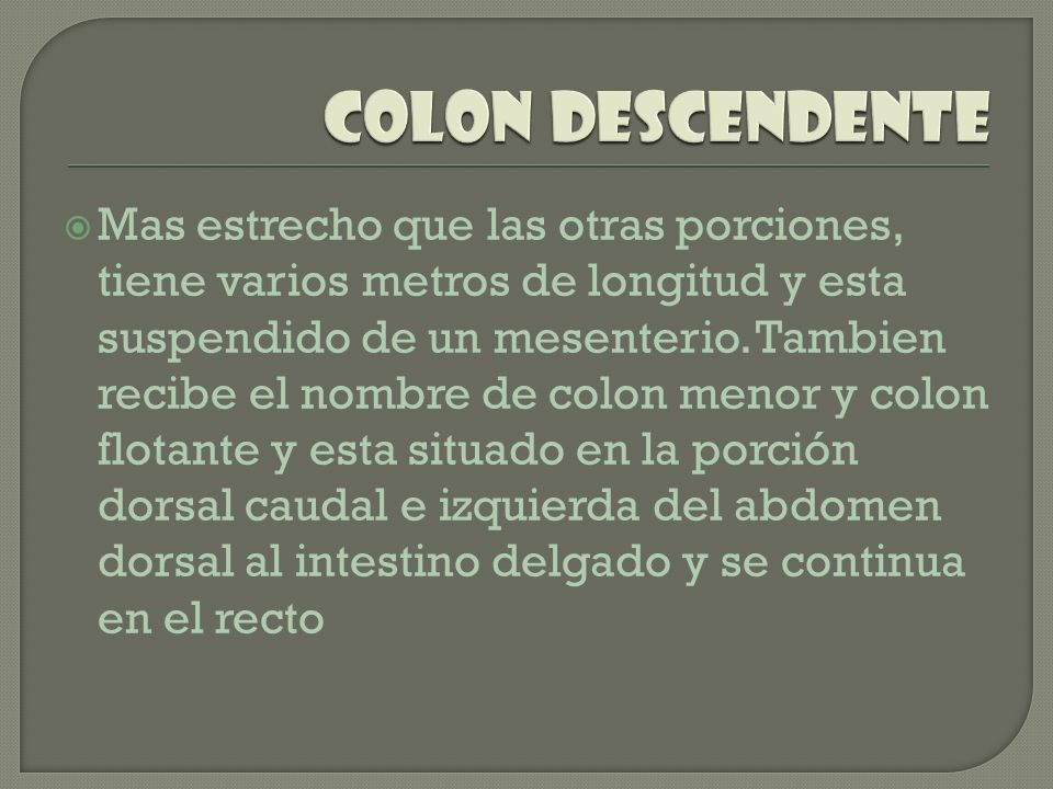 Colon descendente