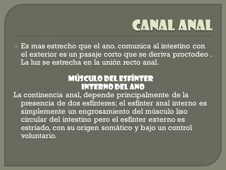 Canal anal