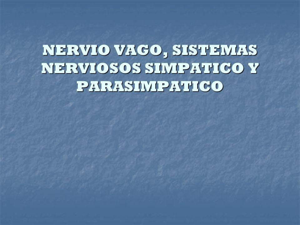 NERVIO VAGO, SISTEMAS NERVIOSOS SIMPATICO Y PARASIMPATICO