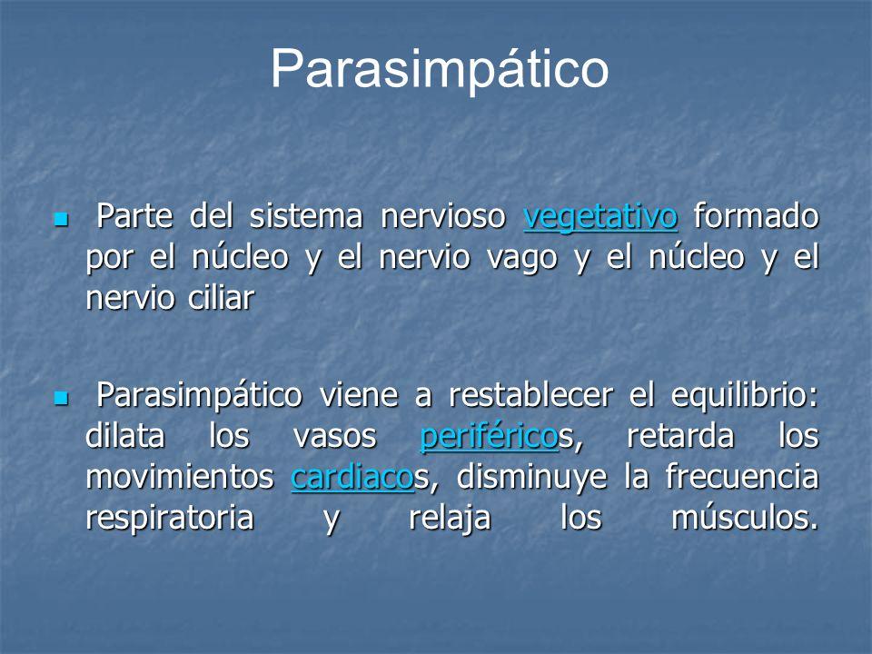 ParasimpáticoParte del sistema nervioso vegetativo formado por el núcleo y el nervio vago y el núcleo y el nervio ciliar.