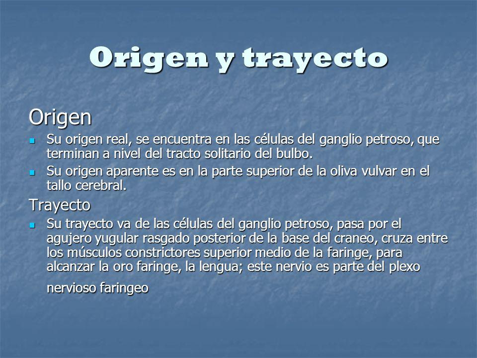 Origen y trayecto Origen Trayecto