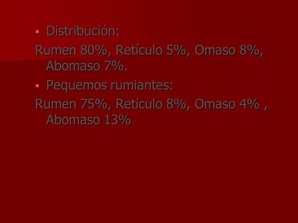 Distribución:Rumen 80%, Retículo 5%, Omaso 8%, Abomaso 7%.