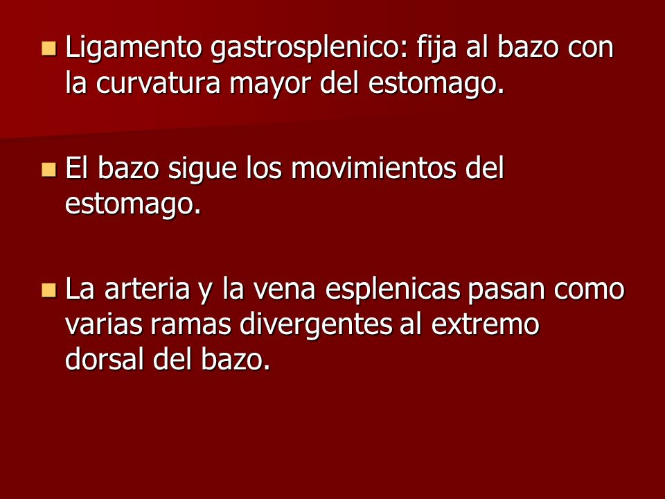 Ligamento gastrosplenico: fija al bazo con la curvatura mayor del estomago.