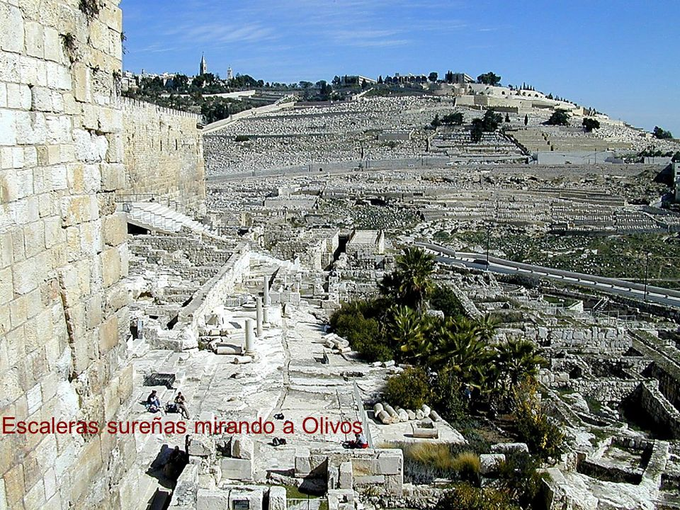 Southern Temple Mount excavations south of steps