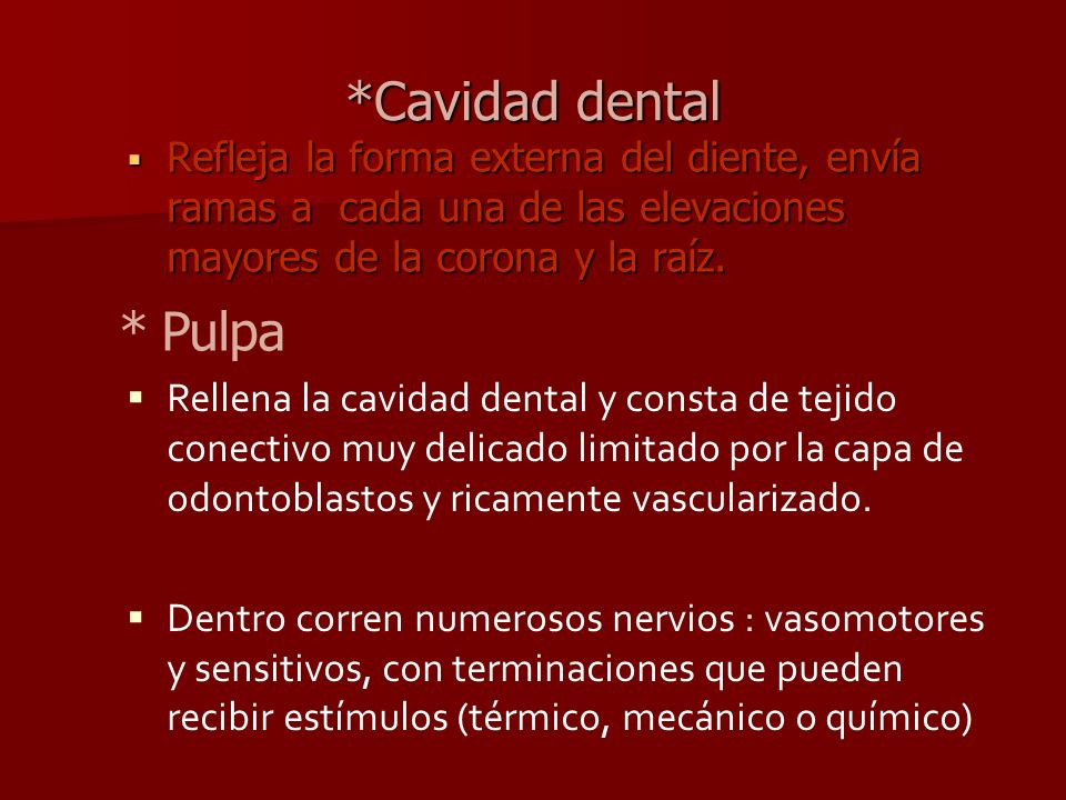 *Cavidad dental * Pulpa