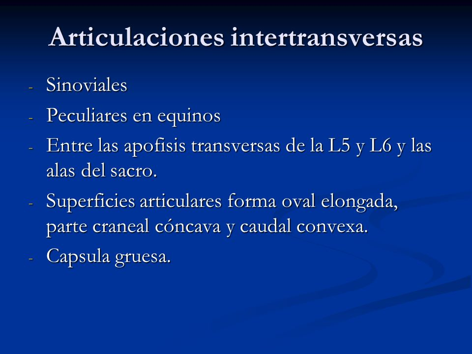 Articulaciones intertransversas