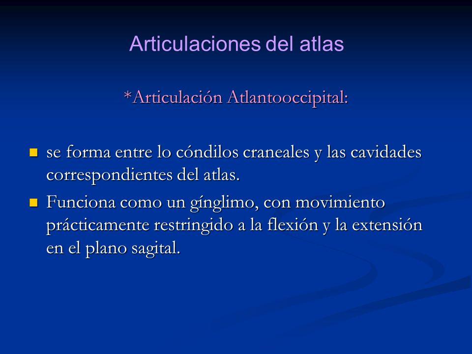 *Articulación Atlantooccipital: