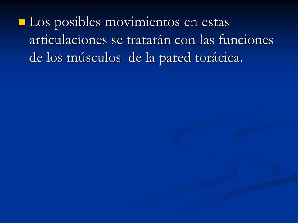 Los posibles movimientos en estas articulaciones se tratarán con las funciones de los músculos de la pared torácica.