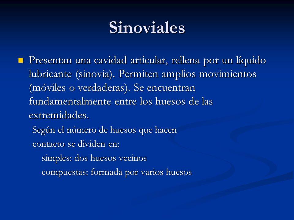 Sinoviales