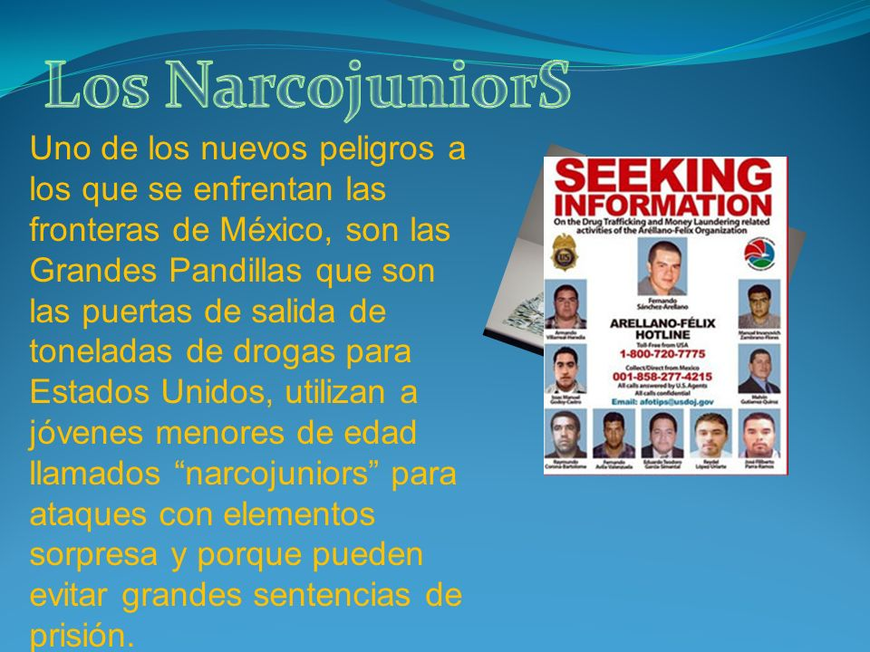 Los NarcojuniorS