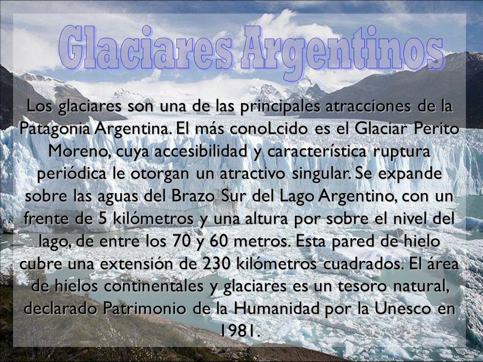 Los glaciares son una de las principales atracciones de la Patagonia Argentina. El más conoLcido es el Glaciar Perito Moreno, cuya accesibilidad y característica ruptura periódica le otorgan un atractivo singular. Se expande sobre las aguas del Brazo Sur del Lago Argentino, con un frente de 5 kilómetros y una altura por sobre el nivel del lago, de entre los 70 y 60 metros. Esta pared de hielo cubre una extensión de 230 kilómetros cuadrados. El área de hielos continentales y glaciares es un tesoro natural, declarado Patrimonio de la Humanidad por la Unesco en 1981.