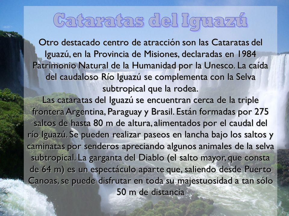 Otro destacado centro de atracción son las Cataratas del Iguazú, en la Provincia de Misiones, declaradas en 1984 Patrimonio Natural de la Humanidad por la Unesco. La caída del caudaloso Río Iguazú se complementa con la Selva subtropical que la rodea. Las cataratas del Iguazú se encuentran cerca de la triple frontera Argentina, Paraguay y Brasil. Están formadas por 275 saltos de hasta 80 m de altura, alimentados por el caudal del río Iguazú. Se pueden realizar paseos en lancha bajo los saltos y caminatas por senderos apreciando algunos animales de la selva subtropical. La garganta del Diablo (el salto mayor, que consta de 64 m) es un espectáculo aparte que, saliendo desde Puerto Canoas, se puede disfrutar en toda su majestuosidad a tan sólo 50 m de distancia