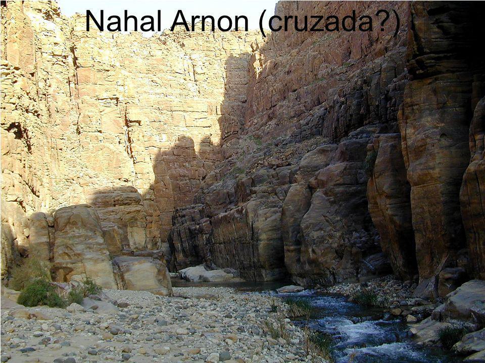 Nahal Arnon (cruzada )