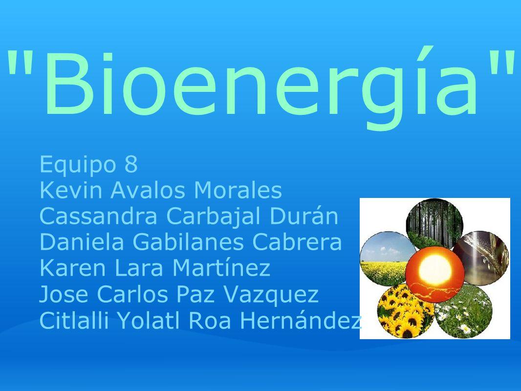 Bioenergía Equipo 8 Kevin Avalos Morales Cassandra Carbajal Durán