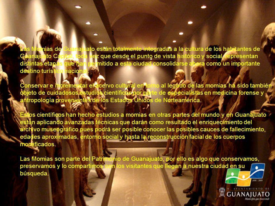 Las Momias de Guanajuato están totalmente integradas a la cultura de los habitantes de Guanajuato Capital, toda vez que desde el punto de vista histórico y social, representan distintas etapas que han permitido a esta ciudad consolidarse ahora como un importante destino turístico nacional.