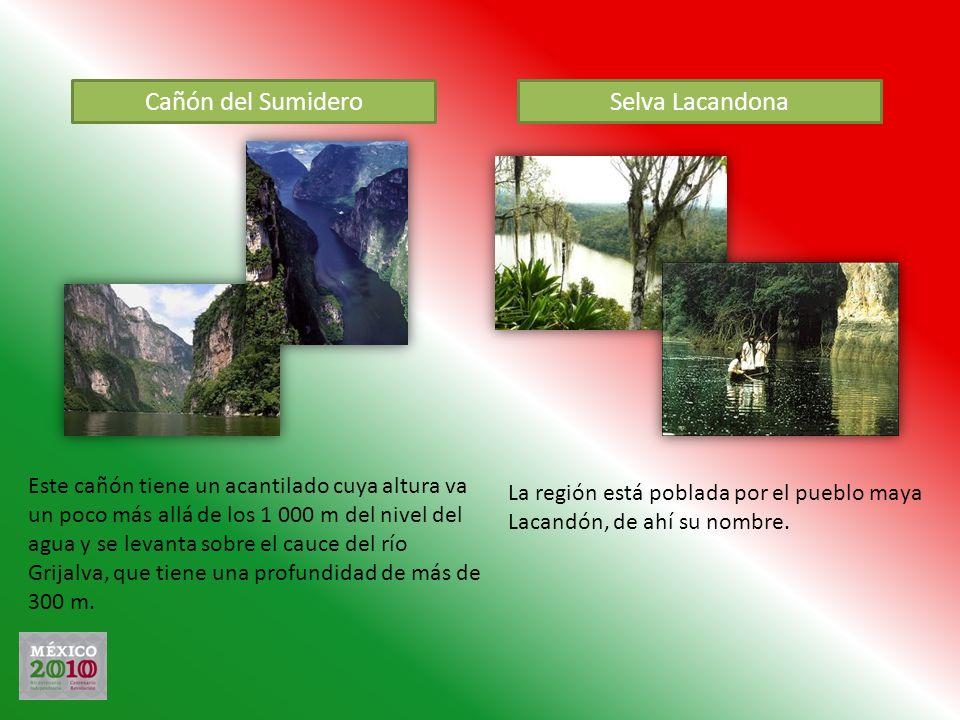 Cañón del Sumidero Selva Lacandona