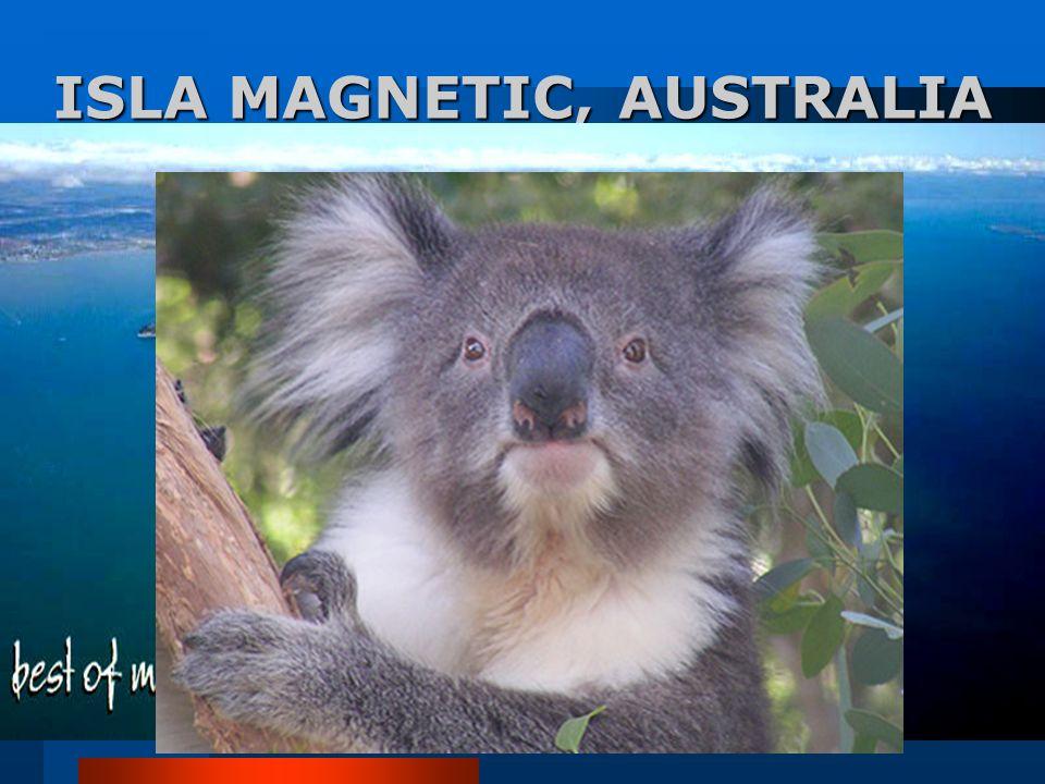 ISLA MAGNETIC, AUSTRALIA