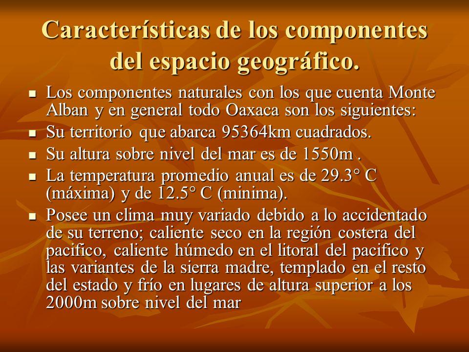 Características de los componentes del espacio geográfico.