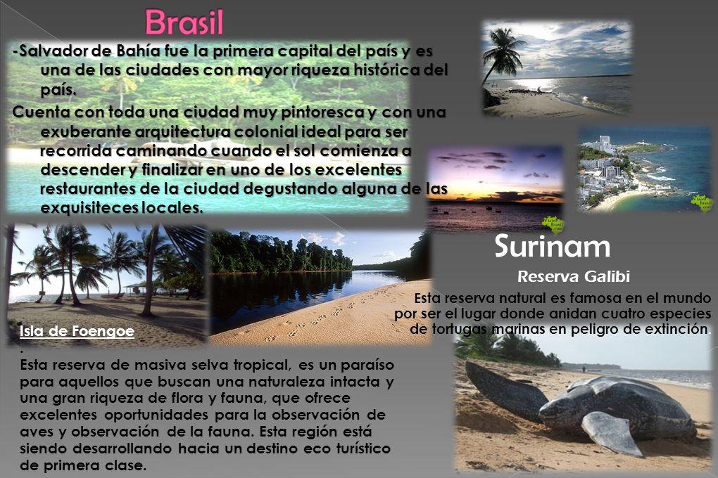 Brasil Surinam Reserva Galibi