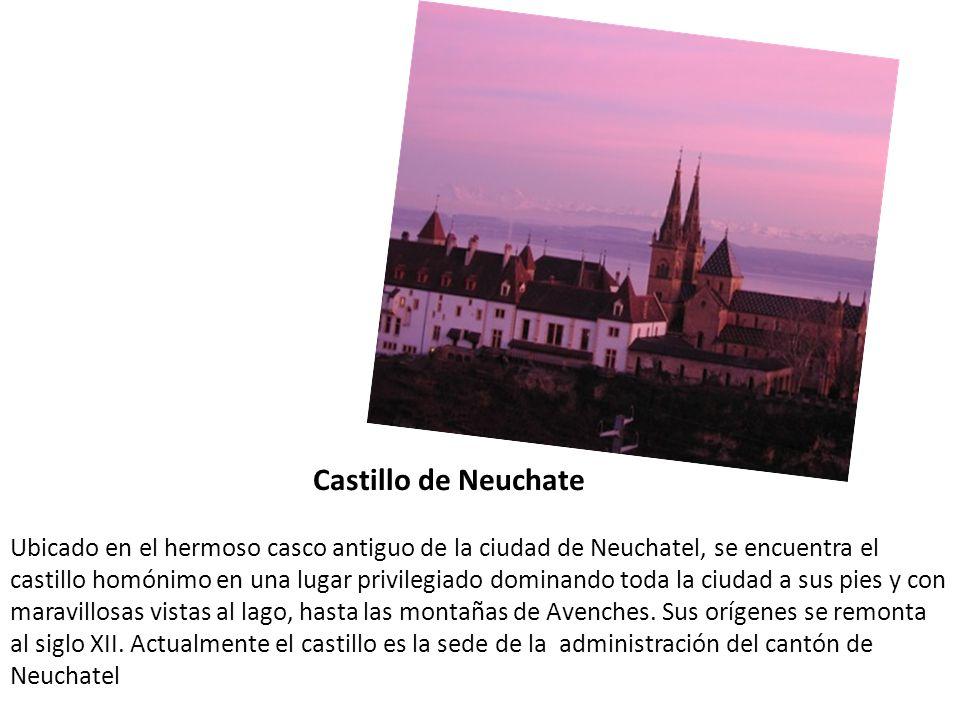 Castillo de Neuchate