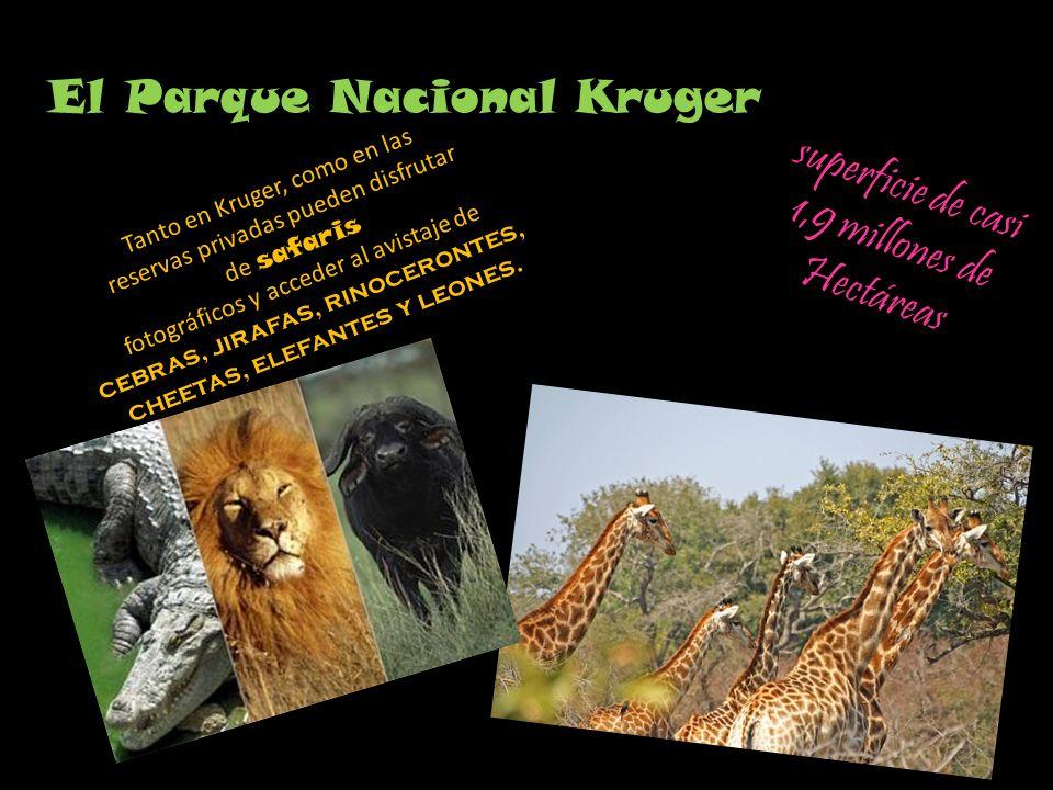 El Parque Nacional Kruger