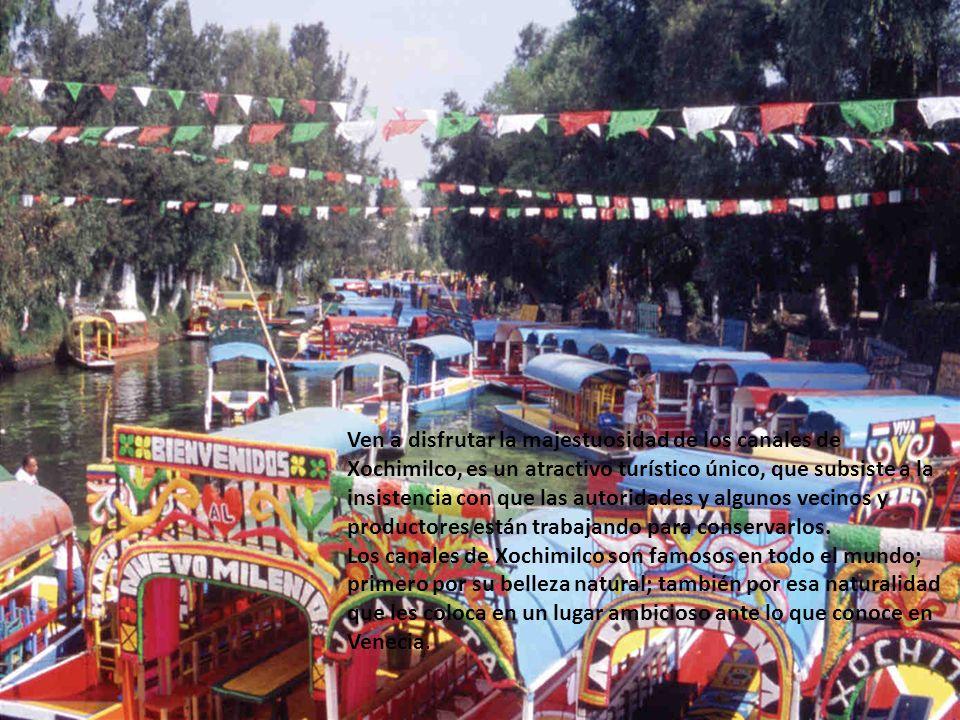 Ven a disfrutar la majestuosidad de los canales de Xochimilco, es un atractivo turístico único, que subsiste a la insistencia con que las autoridades y algunos vecinos y productores están trabajando para conservarlos.