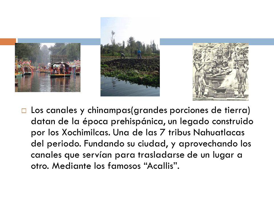 Los canales y chinampas(grandes porciones de tierra) datan de la época prehispánica, un legado construido por los Xochimilcas.