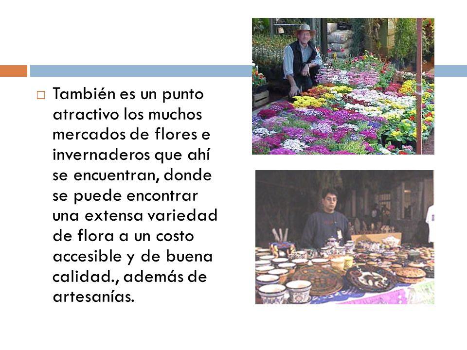 También es un punto atractivo los muchos mercados de flores e invernaderos que ahí se encuentran, donde se puede encontrar una extensa variedad de flora a un costo accesible y de buena calidad., además de artesanías.