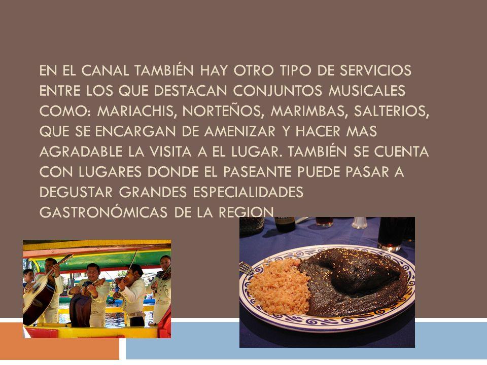 En el canal también hay otro tipo de servicios entre los que destacan conjuntos musicales como: Mariachis, Norteños, Marimbas, Salterios, que se encargan de amenizar y hacer mas agradable la visita a el lugar.