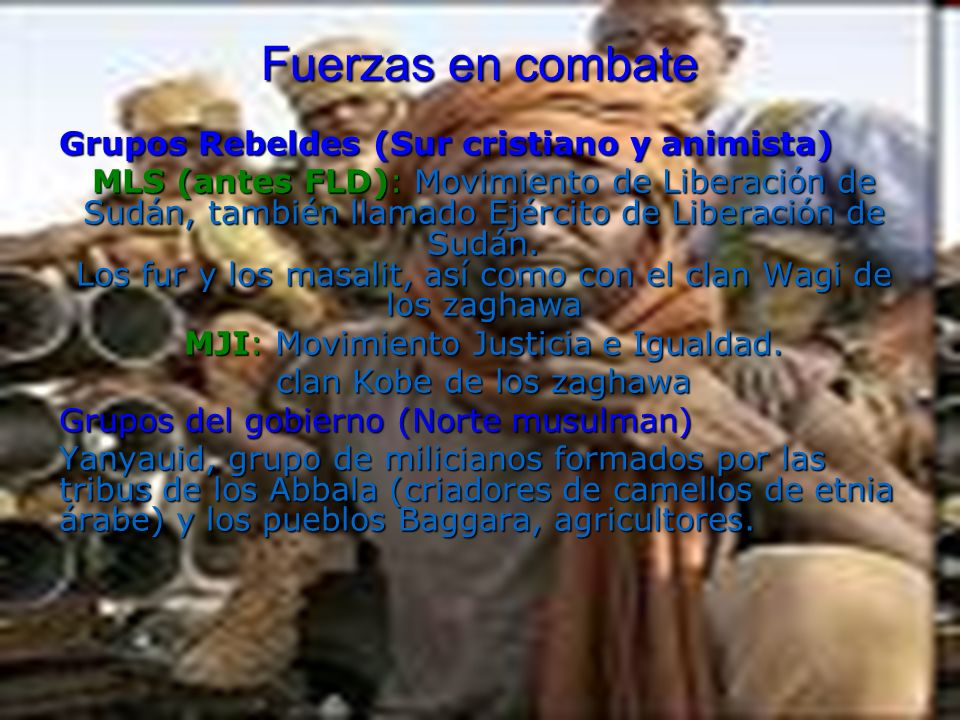 Fuerzas en combate Grupos Rebeldes (Sur cristiano y animista)