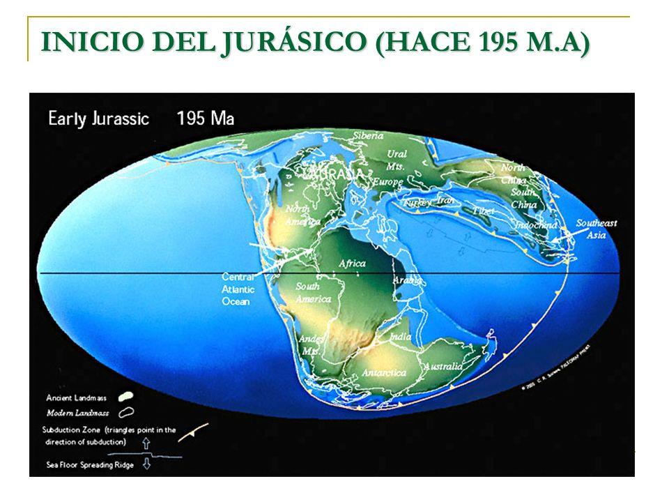 INICIO DEL JURÁSICO (HACE 195 M.A)