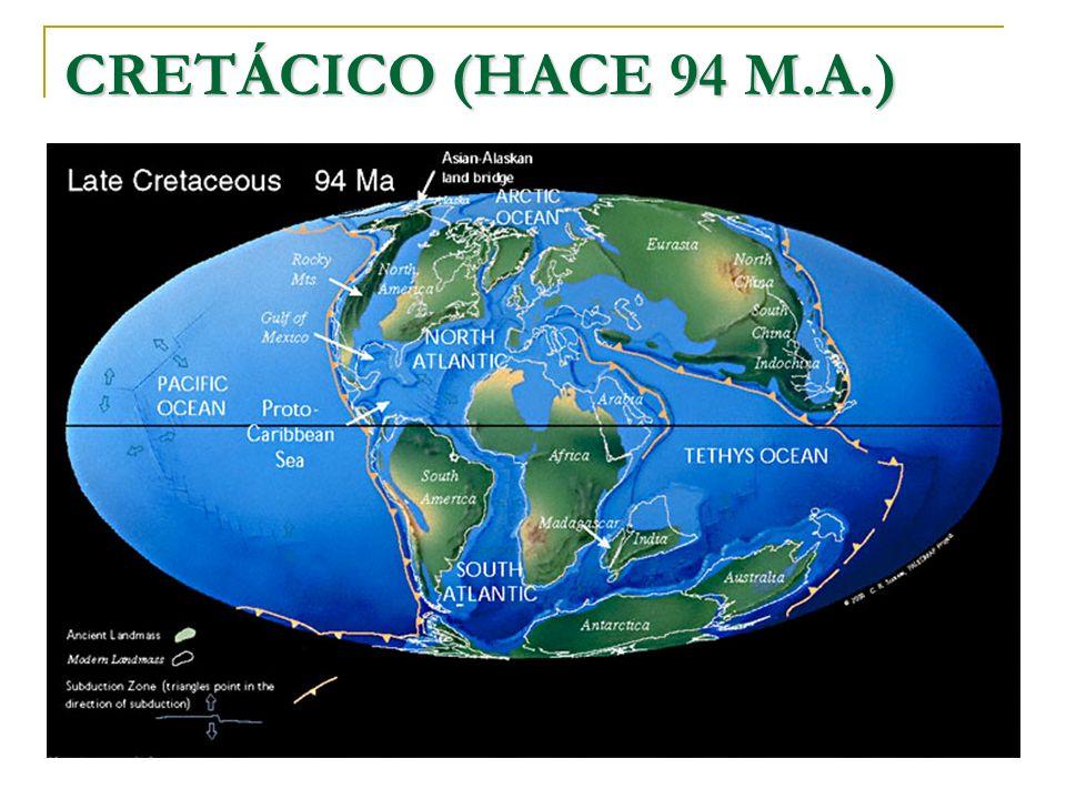 CRETÁCICO (HACE 94 M.A.)