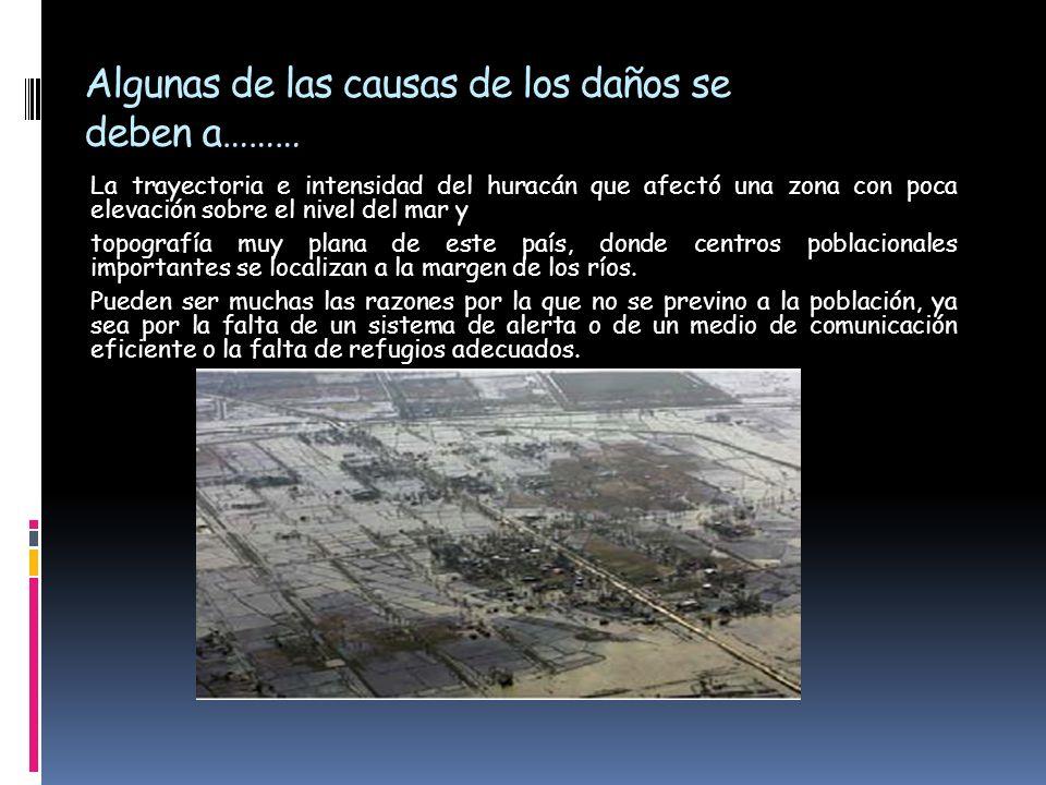 Algunas de las causas de los daños se deben a………