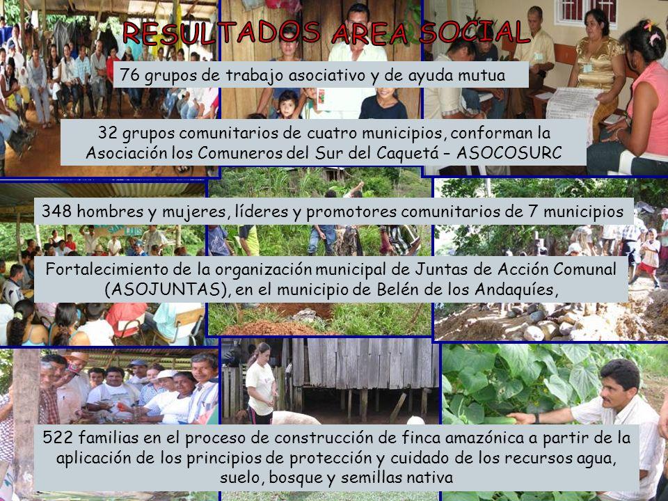 RESULTADOS AREA SOCIAL