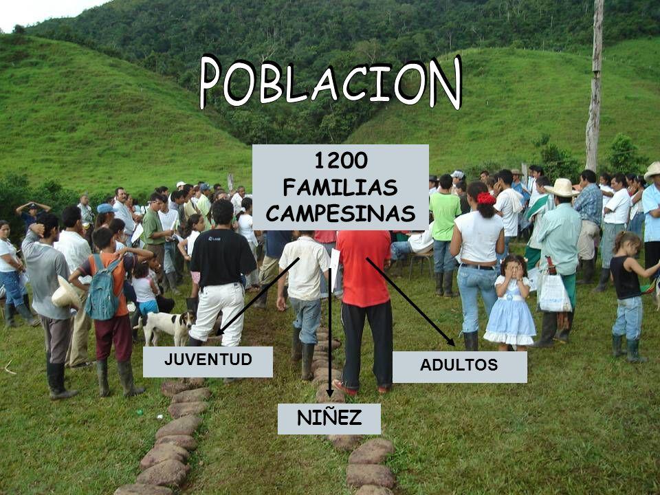 POBLACION 1200 FAMILIAS CAMPESINAS JUVENTUD ADULTOS NIÑEZ