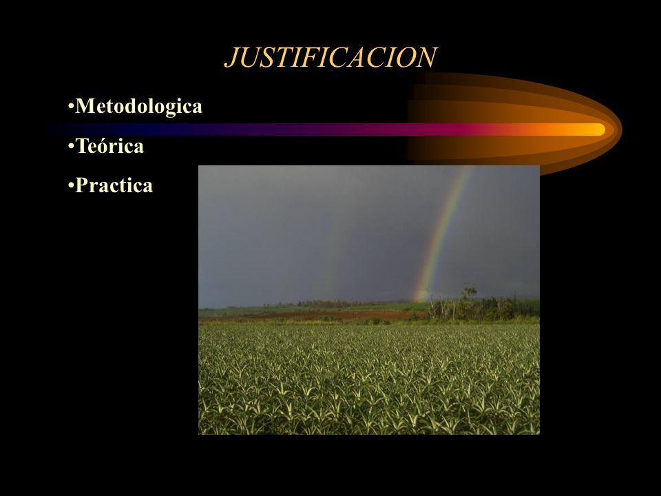 JUSTIFICACION Metodologica Teórica Practica