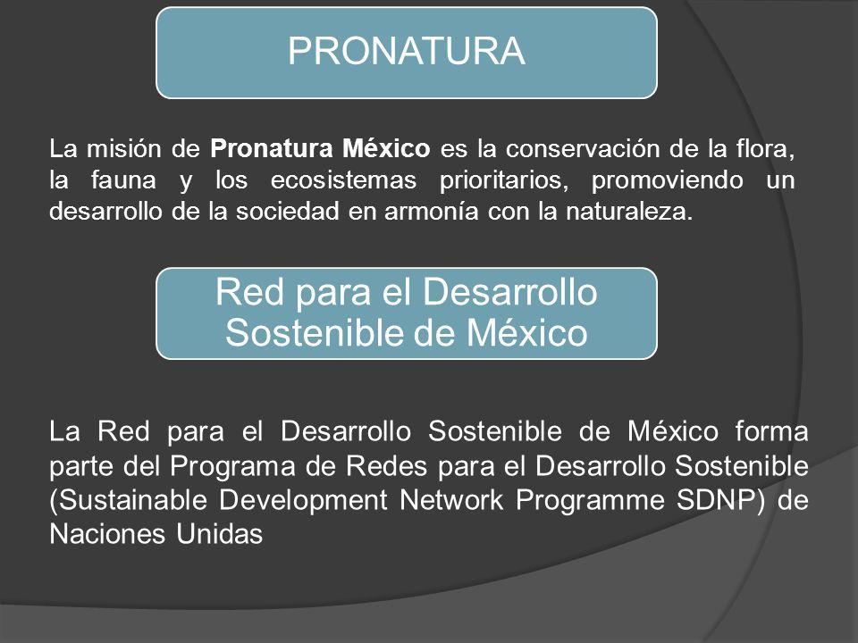Red para el Desarrollo Sostenible de México