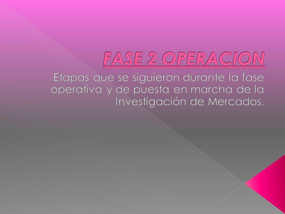 FASE 2 OPERACION Etapas que se siguieron durante la fase operativa y de puesta en marcha de la Investigación de Mercados.