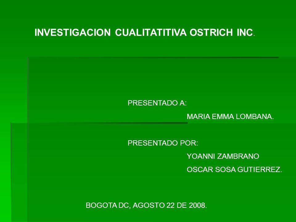 INVESTIGACION CUALITATITIVA OSTRICH INC.