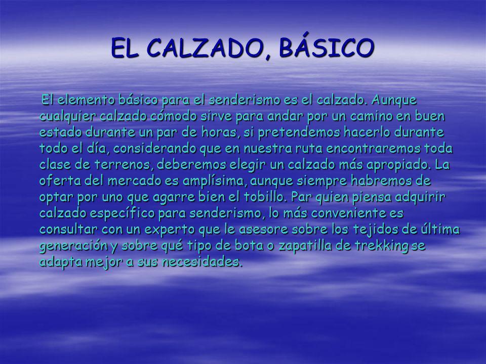 EL CALZADO, BÁSICO