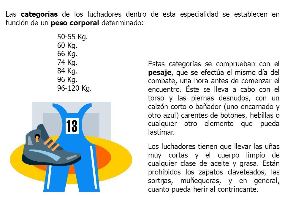 Las categorías de los luchadores dentro de esta especialidad se establecen en función de un peso corporal determinado: