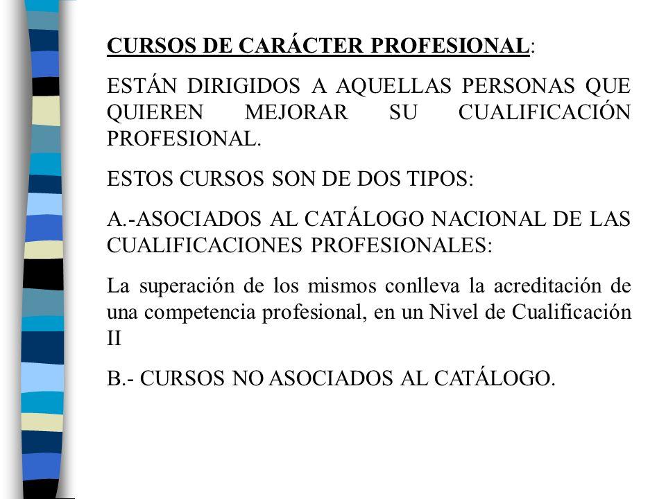CURSOS DE CARÁCTER PROFESIONAL: