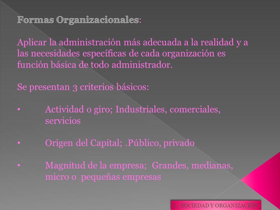 I.- SOCIEDAD Y ORGANIZACIÓN