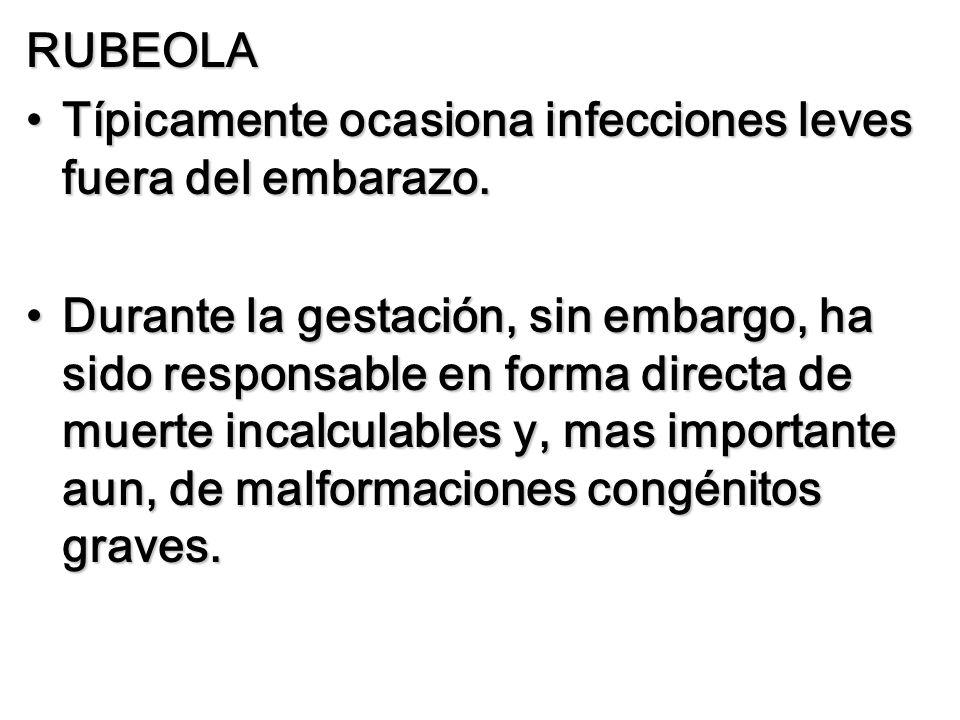 RUBEOLA Típicamente ocasiona infecciones leves fuera del embarazo.