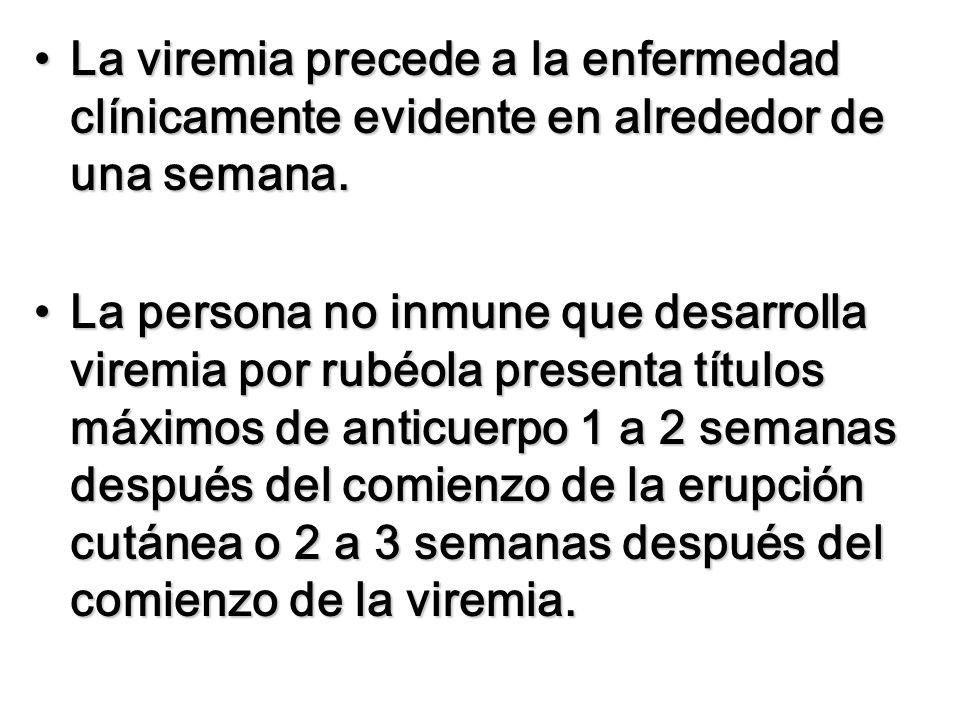 La viremia precede a la enfermedad clínicamente evidente en alrededor de una semana.