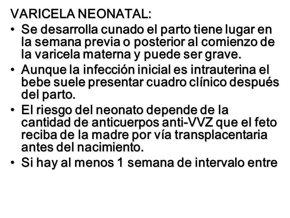 VARICELA NEONATAL:Se desarrolla cunado el parto tiene lugar en la semana previa o posterior al comienzo de la varicela materna y puede ser grave.