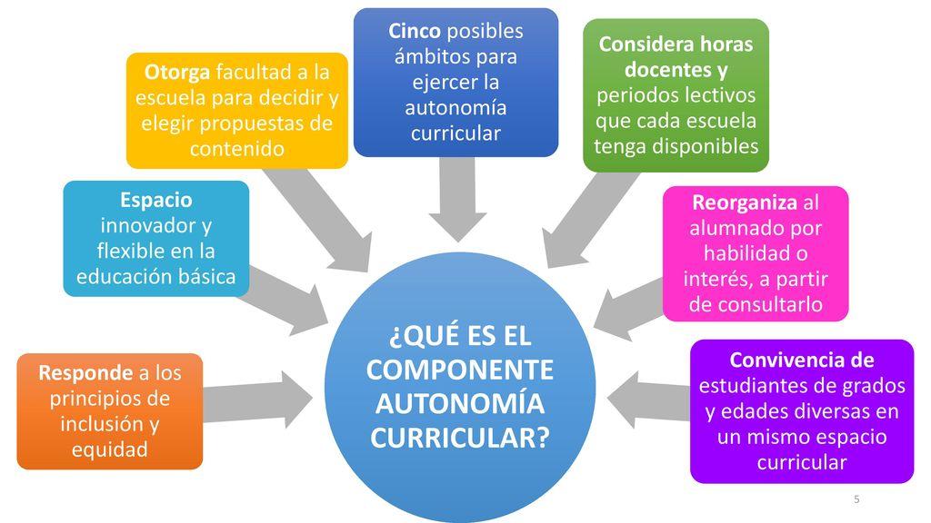 ¿QUÉ ES EL COMPONENTE AUTONOMÍA CURRICULAR